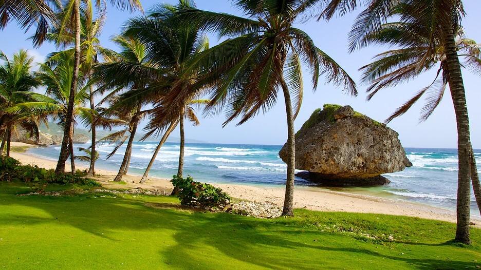 Bathsheba Barbados