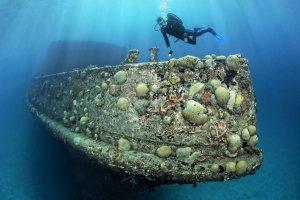 Shipwrecks Barbados