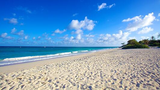 Silver-Sands-Beach-Barbados.jpg